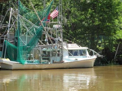 Honey Island Swamp Tour I