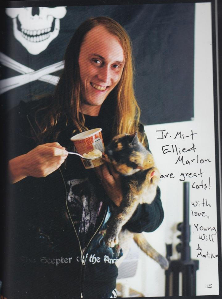 YoungWillMetalCats